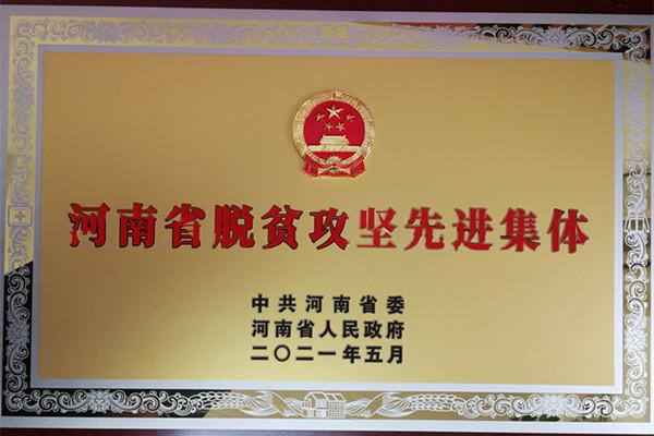 喜报:中共互搏体育委员会荣获河南省脱贫攻坚先进集体